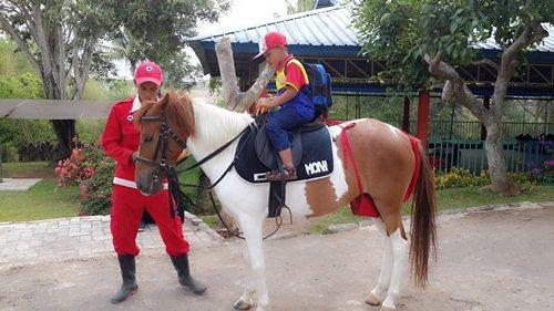 Melatih Keberanian dengan Naik Kuda
