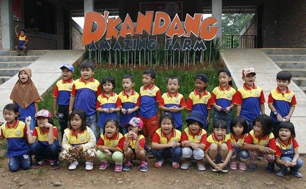 Farming Educations di D.Kandang